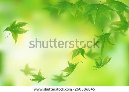 Fresh green leaves background, vector illustration - stock vector