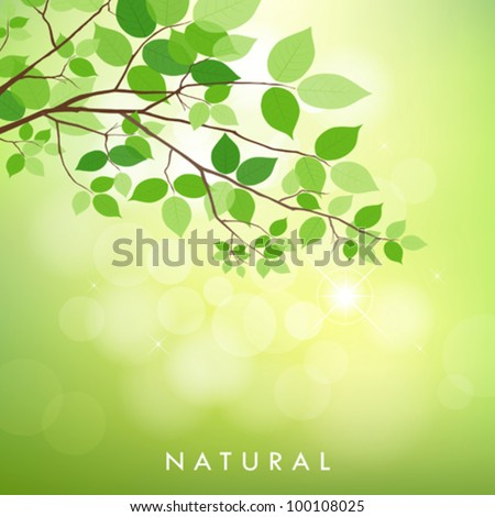 Fresh green leaves on natural background. vector illustration - stock vector