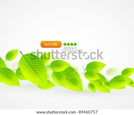 Fresh green leaves. Vector abstract background