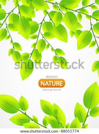 Fresh green leaves vector nature background - stock vector