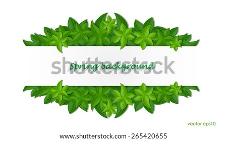 Fresh green leaves with white sticker, spring background. vector eps10. - stock vector