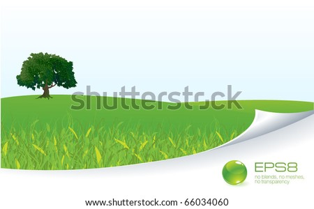 Fresh green meadow with grass and tree. Vector template background. - stock vector