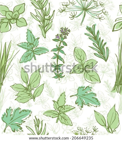 Fresh herbs seamless background vector - stock vector