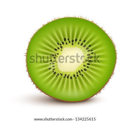 Fresh kiwi fruit Slice isolated on white background. Vector Illustration
