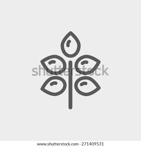 Fresh leaves icon thin line for web and mobile, modern minimalistic flat design. Vector dark grey icon on light grey background. - stock vector