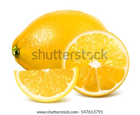 Fresh lemon and lemons slices.. Vector illustration. Fully editable handmade mesh.
