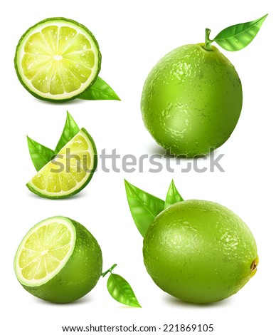Fresh limes with leaves. Collection of different limes views. - stock vector