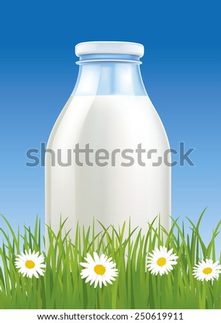 fresh milk in bottle on grass filed with chamomile - stock vector