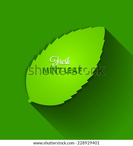 Fresh mint leaf with long shadow effect on background - stock vector
