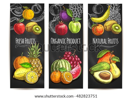 Fresh natural fruits banners. Vector sketch color icons of pear, orange, avocado, apple, peach, banana, kiwi, lemon, mango, pineapple, watermelon, pomegranate, grape, plum for juice drink label