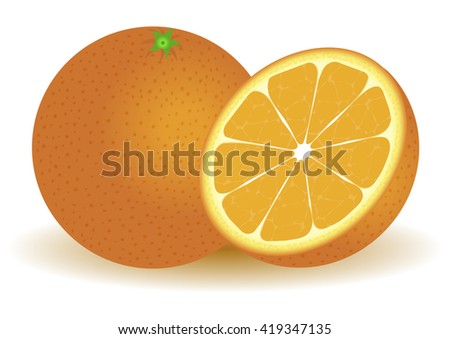 Fresh orange isolated on a white background in two forms: whole and cut. Vector illustration. - stock vector