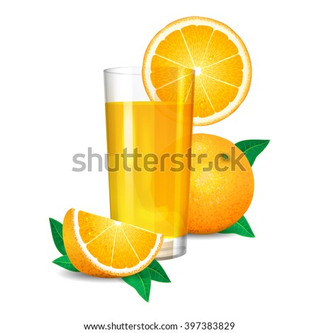 Fresh orange juice and pieces of orange, citrus juice and oranges. Realistic transparent glass of juice, vector illustration on white background