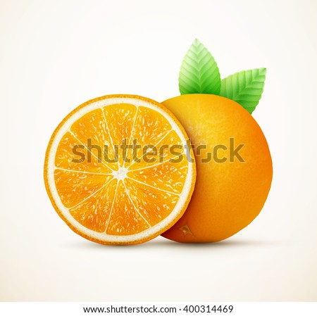 Fresh oranges fruits with green leaves eps10 vector illustration
