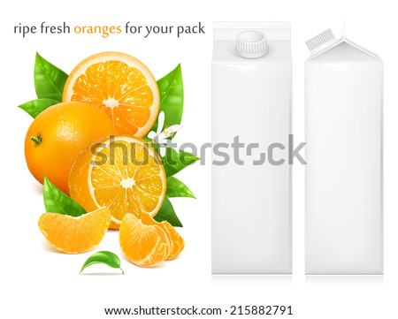 Fresh ripe oranges with green leaves and water drops. Juice white carton package. Vector illustration - stock vector