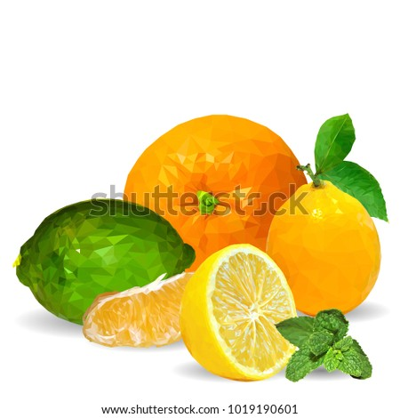 Fresh Tangerines Orange Nutritious Lemon Tasty Stock Vector