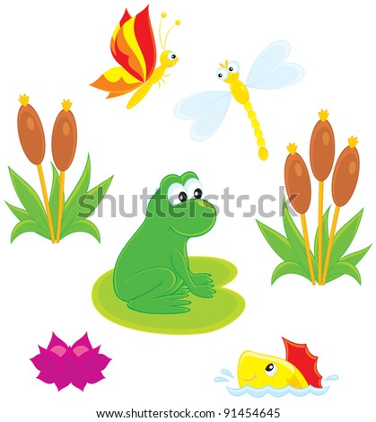 frog, dragonfly, butterfly, fish, water lily and cane