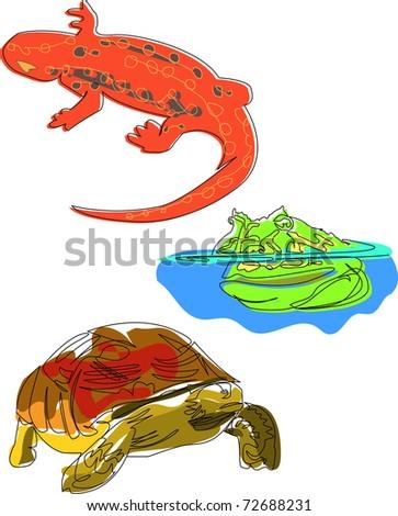 Frog Lizard Turtle - stock vector