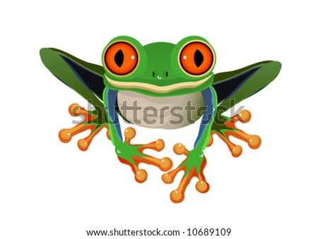 Frog  Red-eye tree isolated on a white background VECTOR (See Jpeg Also In My Portfolio) - stock vector