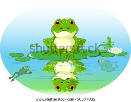 Frog sitting on Water lily leaf - stock vector