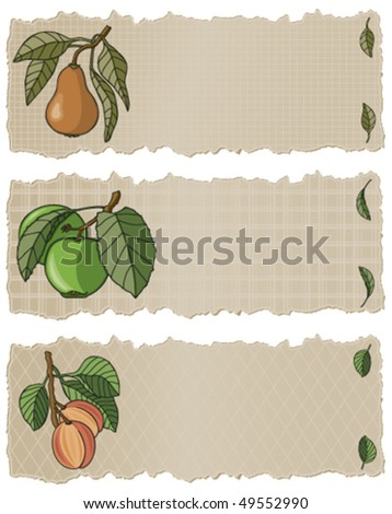 Fruit Banners Apple, peach, Pear. Each banner has a soft lined pattern. - stock vector