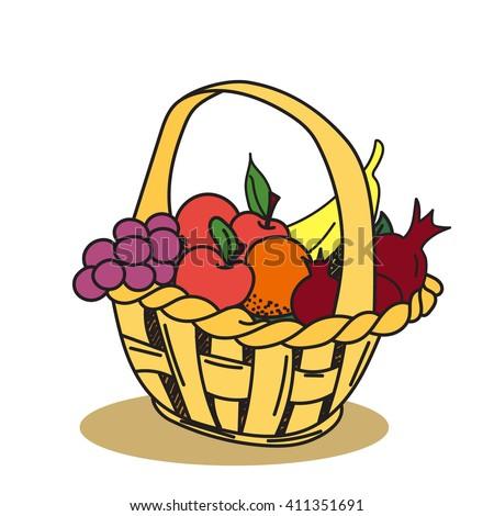 Fruit basket: apple, grape, banana, pomegranate. Hand drawn, doodle, vector,  design elements. Vector illustration - stock vector