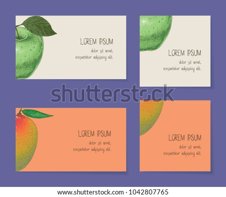 Fruit Business Cards Template Collection On Stock Vector 1042807765