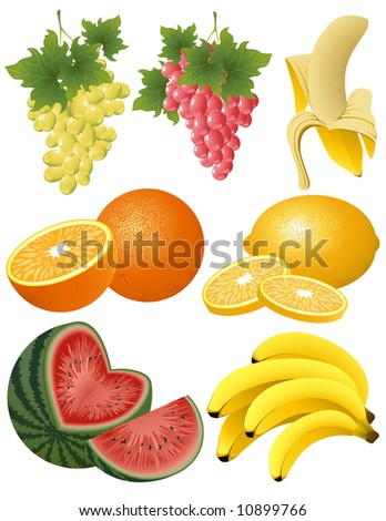 Fruit collection, vector illustration, EPS file included - stock vector