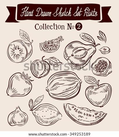 Fruit. Hand-drawn Doodle vector set - stock vector