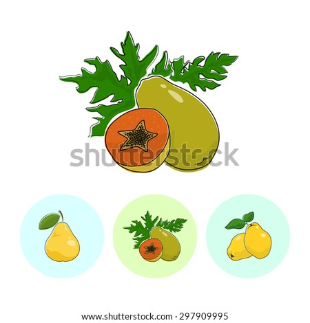 Fruit Papaya on White Background , Set of Three Round Colorful Icons Pear, Papaya and Quince , Vector Illustration - stock vector