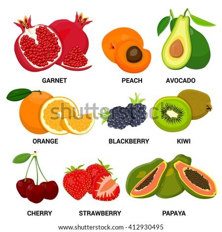 Fruit set. Color vector illustration - stock vector