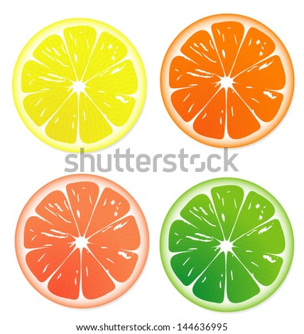 Fruit slice vector, isolated on white - stock vector