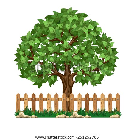 Fruit tree behind the wooden fence - stock vector