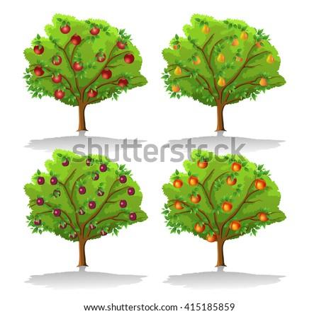 fruit trees - stock vector