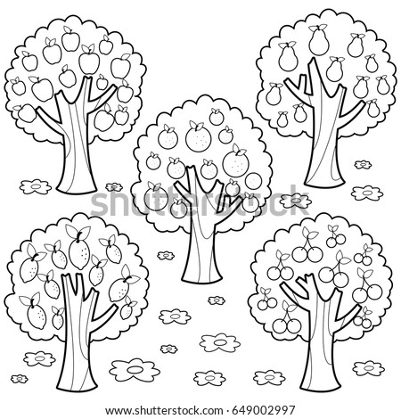 Fruit Trees Black White Coloring Book Stock Photo (Photo, Vector ...