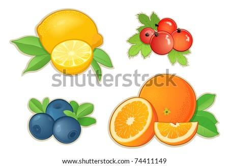Fruits - stock vector