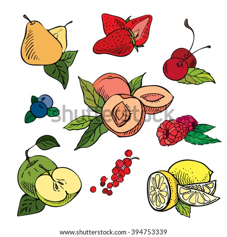Fruits and berries set. Hand drawn vector color sketch. Fruit doodles on white background.