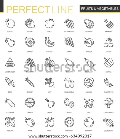 fruits and vegetables thin line web icons set outline stroke icon design