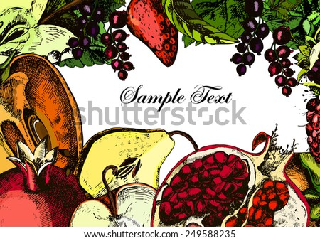 Fruits. Card. Freehand drawing. Vector illustration - stock vector