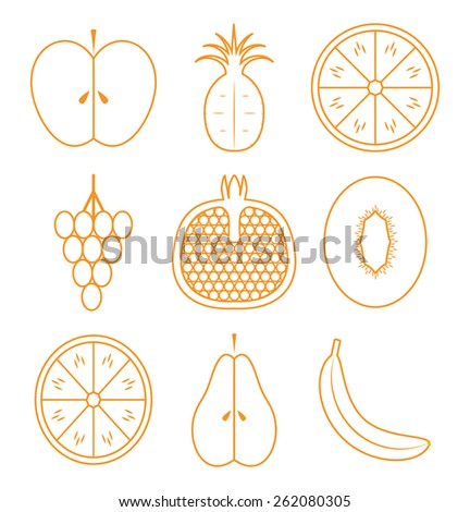 Fruits infographics. - stock vector