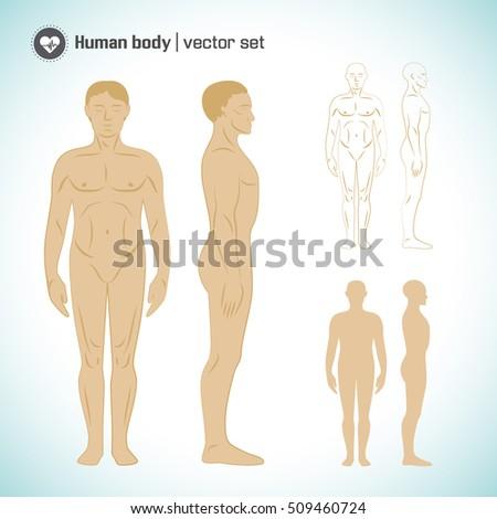 shruti seth full body nude image