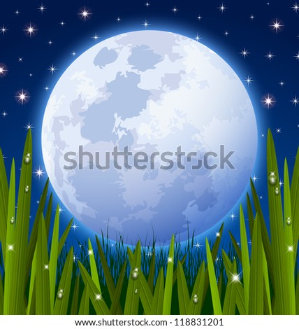 Full moon and starry night sky with grass meadow in the foreground - stock vector