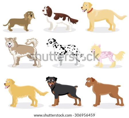 Funny cartoon dog of various breeds standing in side view set isolated on white - stock vector