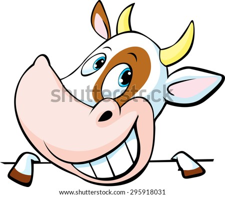 funny cow peeks out from behind a white surface - vector cartoon illustration - stock vector