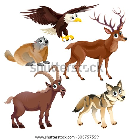 Funny mountain animals, deer, eagle, groundhog, steinbock, wolf. Vector cartoon isolated characters. - stock vector