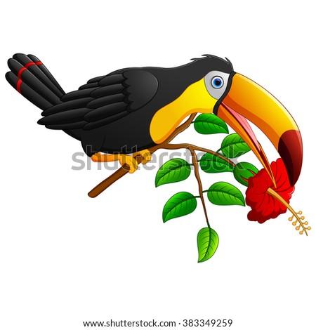 Funny toucan bird cartoon - stock vector