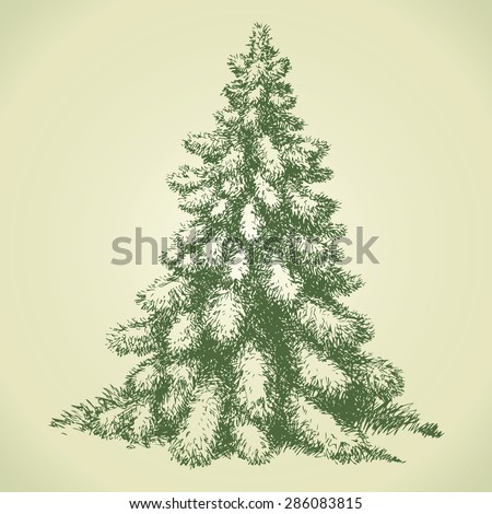 Furry beautiful young picea in coppice glade. Vector monochrome freehand cartoon ink drawn backdrop sketchy in art scribble ancient style pen on paper with space for text on sky - stock vector