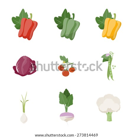 Garden fresh vegetables set on white background, including bell pepper, chicory, tomato, peas, onion, turnip and cauliflower - stock vector