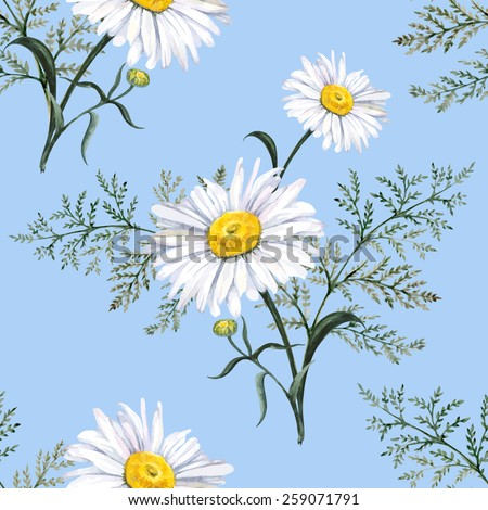 Garden of daisies seamless watercolor pattern  - stock vector