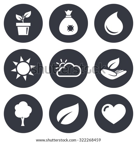 Garden sprout, leaf icons. Nature and weather signs. Sun, cloud and tree symbols. Gray flat circle buttons. Vector - stock vector
