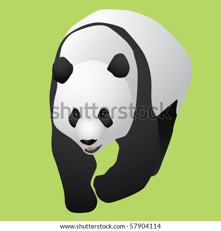 giant china panda - stock vector